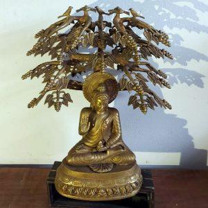 Tree-buddha-height-22-inches-price-520-